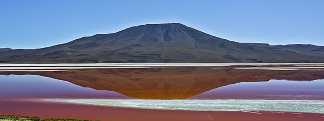 Laguna Colorada of Bolivia